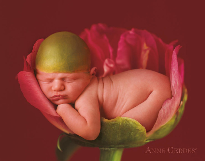 jacob-in-peony-anne-geddes